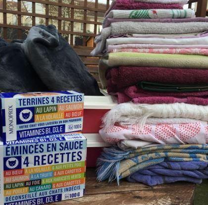 Madame Kowalsky s'est mobilisée pour nos protégés et nous a livrés textiles et nourriture. Merci madame pour votre générosité ❤