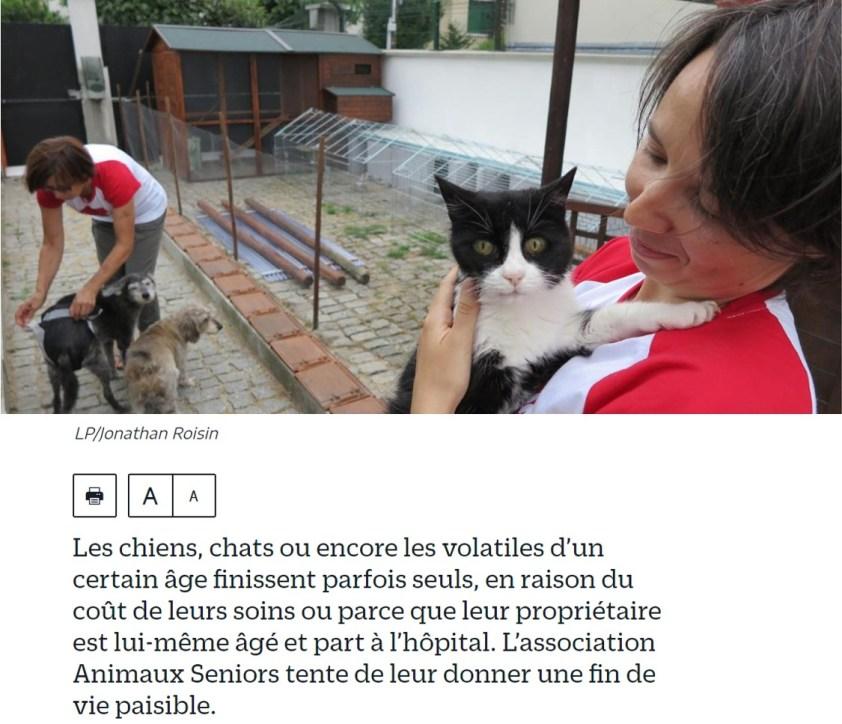 Le parisien web 2