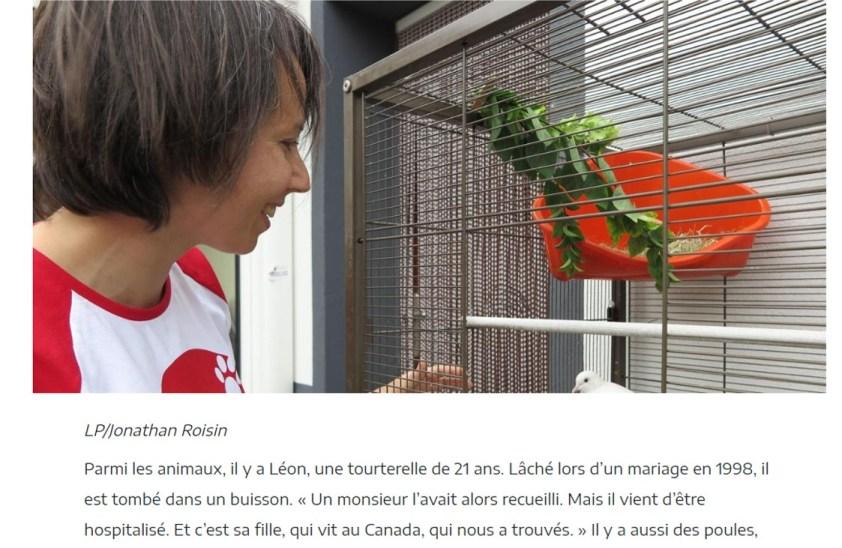Le parisien web 3