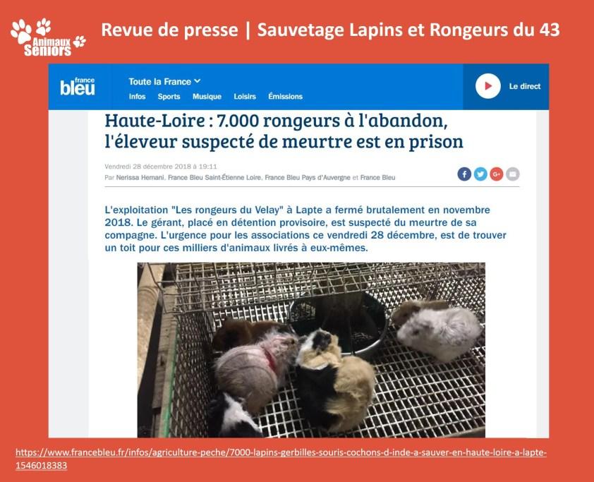 Lapins_revue de presse2