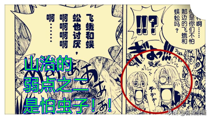 海賊王998話:山治第二弱點怕蟲子,尾田讓黑瑪利亞是遠古狼蛛