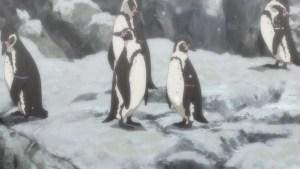 ペンギンが一杯の図