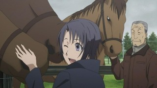 Aki's beloved horses. I want to be a horse too.