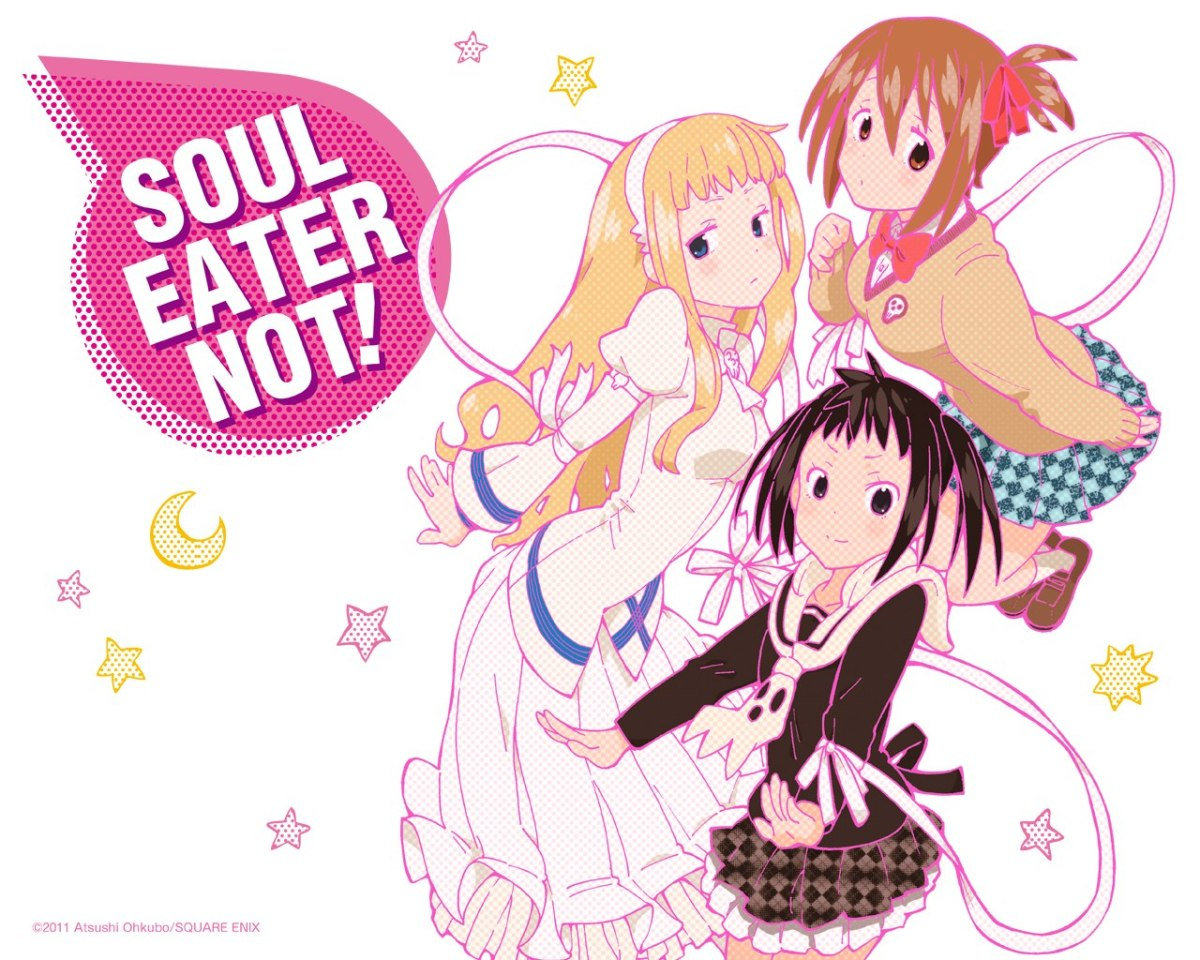 """Soul Eater Not!"" spinoff mangaen laves til anime"