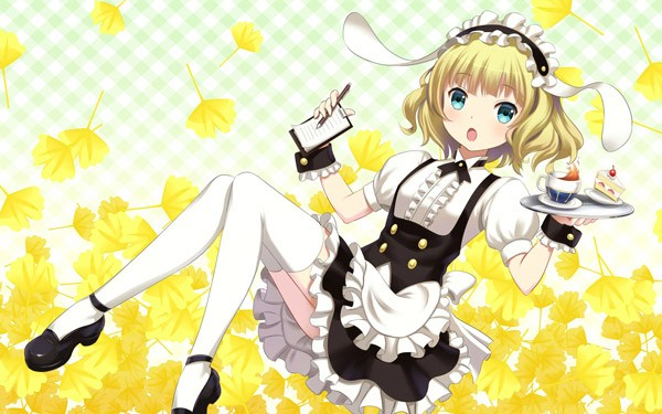 18. Syaro Kirima (Is the order a rabbit?) - 45