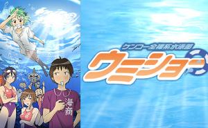 「ケンコー全裸系水泳部 ウミショー」をアニメを見始めたおっさんが見てみた!【感想・レビュー・評価★★☆☆☆】 #ケンコー全裸系水泳部 ウミショー #ウミショー