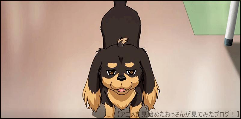 【主人公】春海 和人(はるみ かずひと) / 声 - 櫻井孝宏 犬とハサミは使いよう アニメ は 登場キャラの主人公・ヒロインがカワイイ 【つまらない】「犬とハサミは使いよう」をアニメを見始めたおっさんが見てみた!【評価・レビュー・感想★★☆☆☆】 #犬ハサ #犬とハサミは使いよう