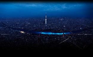 Festival Hotaru 2012(9)