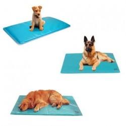 tapis auto rafraichissant pour chien