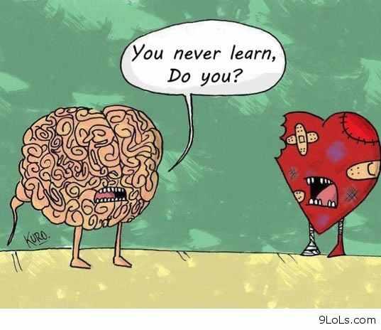 heartvbrain