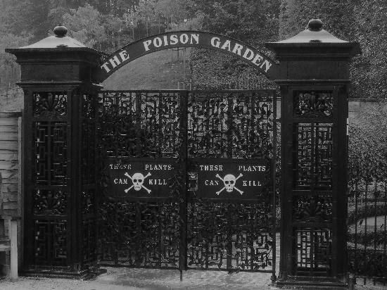 the-poison-garden-alnwick