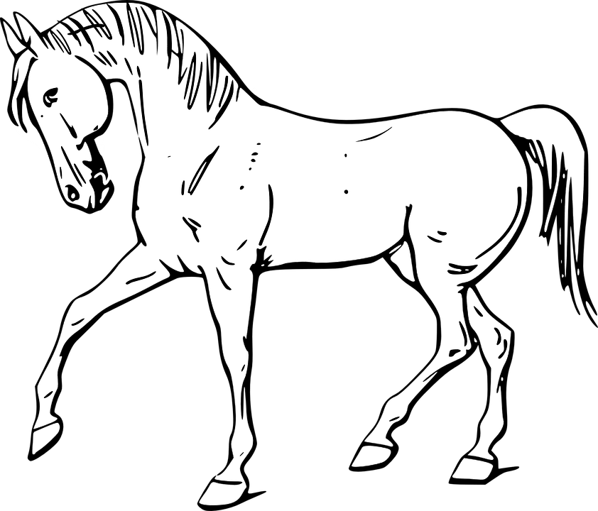 Dessin de cheval - Dessin facile de cheval ...