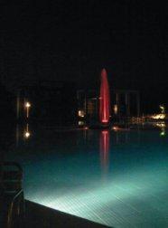 Night Time Turkey Pool