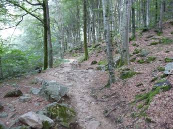 verzasca walking path