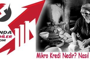 Mikro Kredi Nedir Nasil Alinir