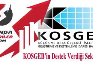 kosgeb'in destek verdiği sektörler