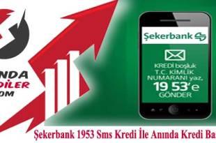 Şekerbank 1953 Sms Kredi İle Anında Kredi Başvurusu