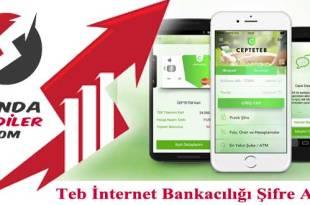 Teb İnternet Bankacılığı Şifre Alma