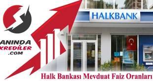 Halk Bankası Mevduat Faiz Oranları 2018
