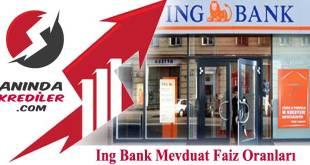 Ing Bank Mevduat Faiz Oranları 2018