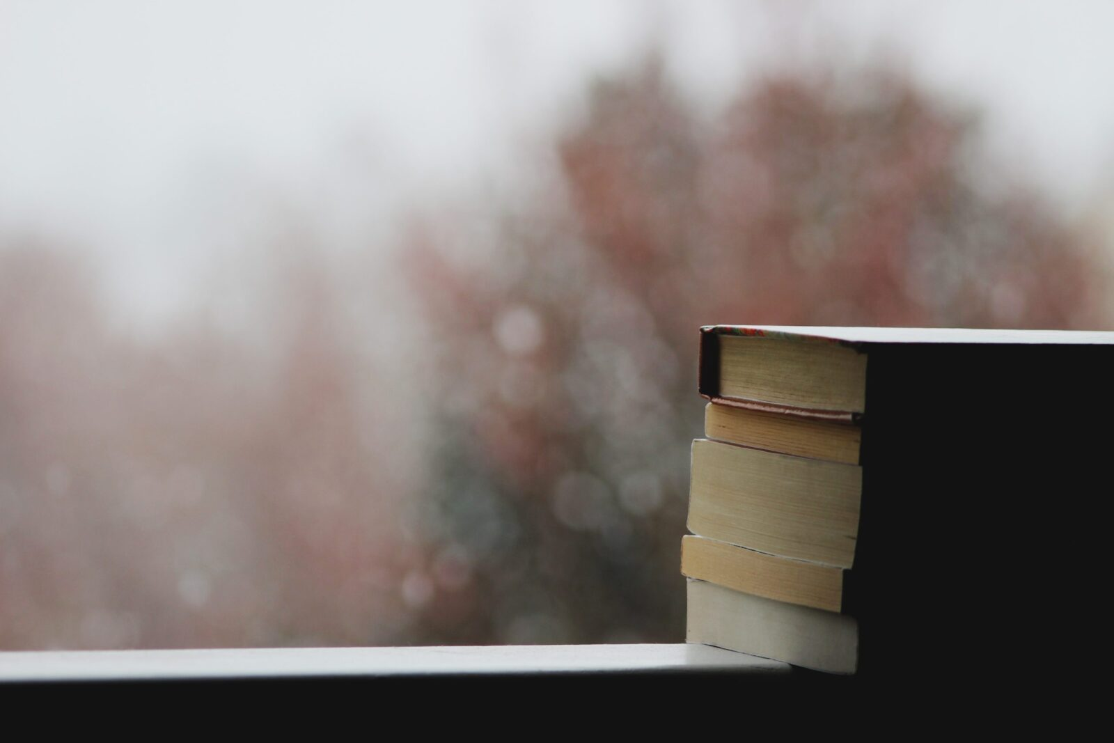 These 5 books will help you realign with yourself