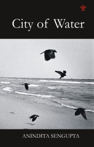 City of Water by Anindita Sengupta