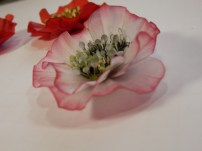 vellum poppy, flower of the month, An Inkin' Stampede