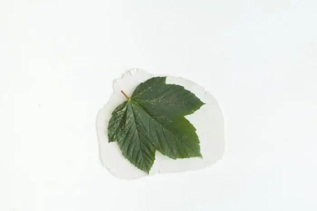 Leaf Catchall Dish-3
