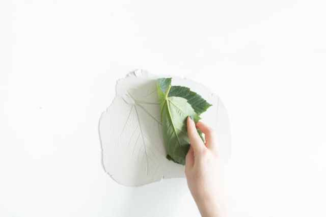 Leaf Catchall Dish-5