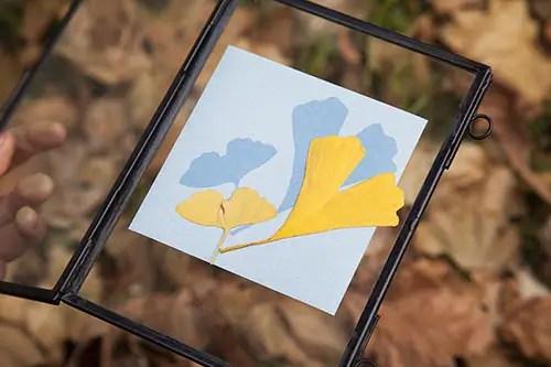 3-sunprint-exposure