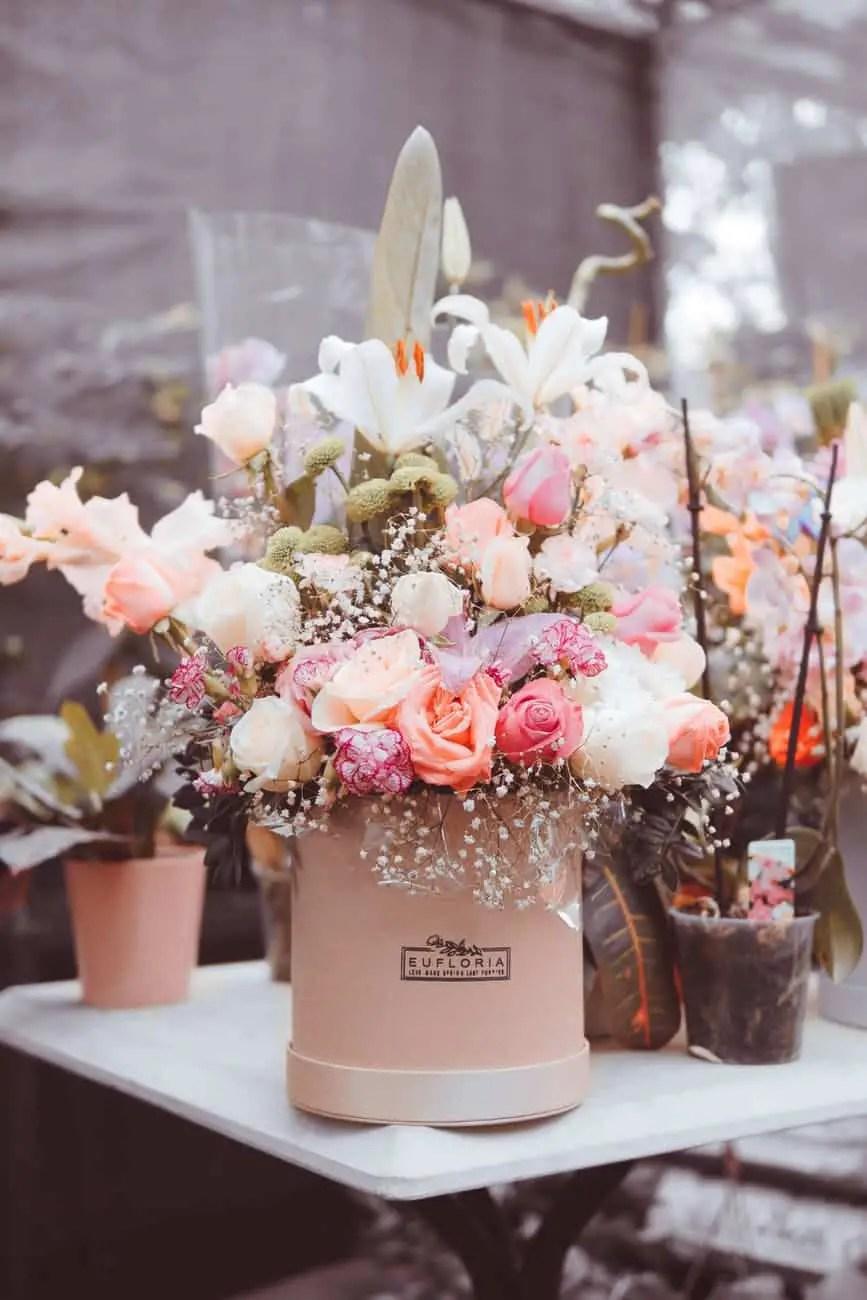 multicolored flowers on beige ceramic pot