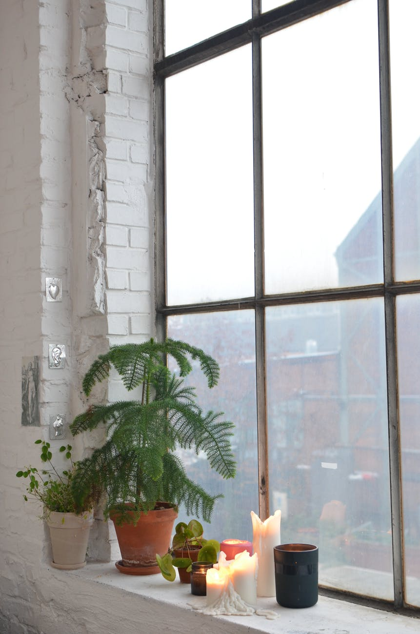 burning candles placed with potted plants near window