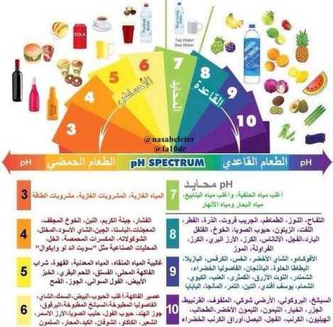 أهم الأطعمة القلوية والحمضية