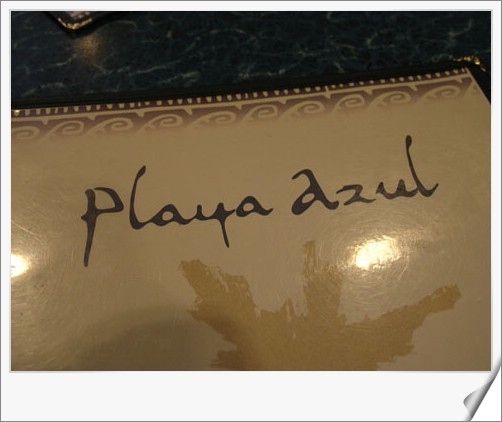 96.08.18 金融區+貴族山+Playa Azul墨西哥餐廳