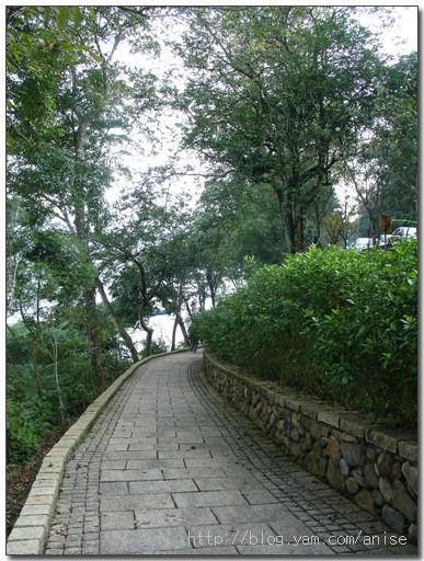 日月潭步道之旅 | 水社親水步道 + 玄光寺 @愛吃鬼芸芸