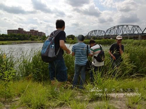 大樹舊鐵橋濕地教育園區015.jpg