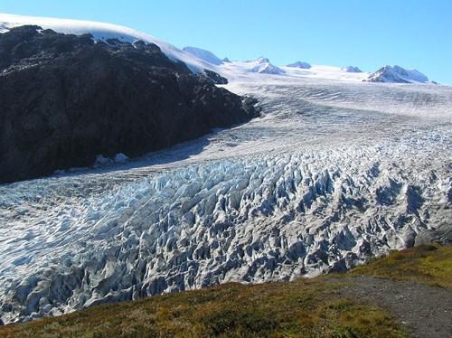 Exit Glacier - Kenai Peninsula.jpg