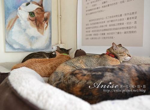 4貓空間004拷貝.jpg