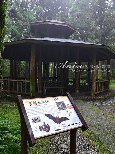 福山植物園_020.jpg