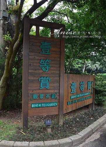 一等賞景觀茶園_001.jpg