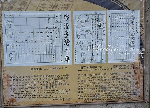 頭城農場_123.jpg