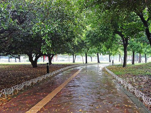 大溪埔頂公園_011.jpg