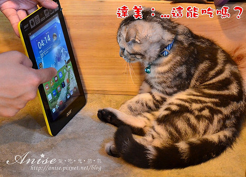 ACER Iconia one 7,輕巧平價彩色小平板