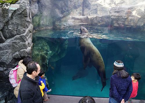 福島水族館(環境水族館)アクアマリンふくしま(Aquamarine Fukushima )