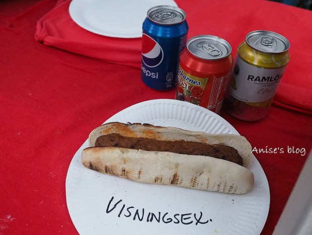 瑞典千年小鎮Sigtuna015