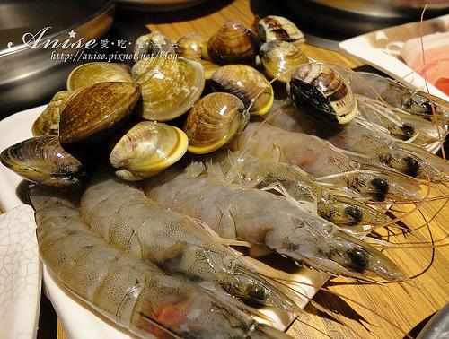 鍋爸涮涮鍋南京店,傳說中最美味的一家店 @愛吃鬼芸芸