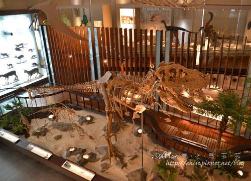 國立台灣博物館與土銀展示館,哎啊有恐龍! @愛吃鬼芸芸