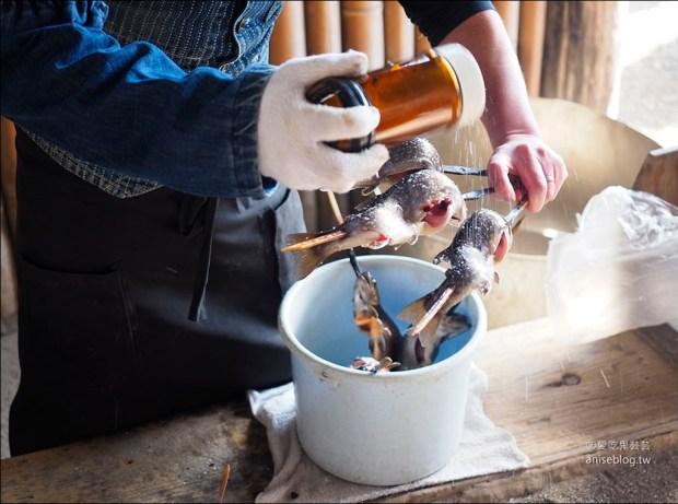 清流之里(垂釣體驗),現釣現烤鱒魚超嫩超肥超好吃!