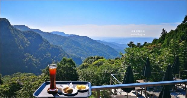 三峽熊空茶園,走一趟台北秘境森林下午茶吧!(姊姊遊記) @愛吃鬼芸芸