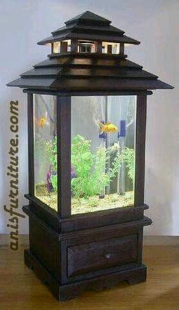 aquarium cantik jepara